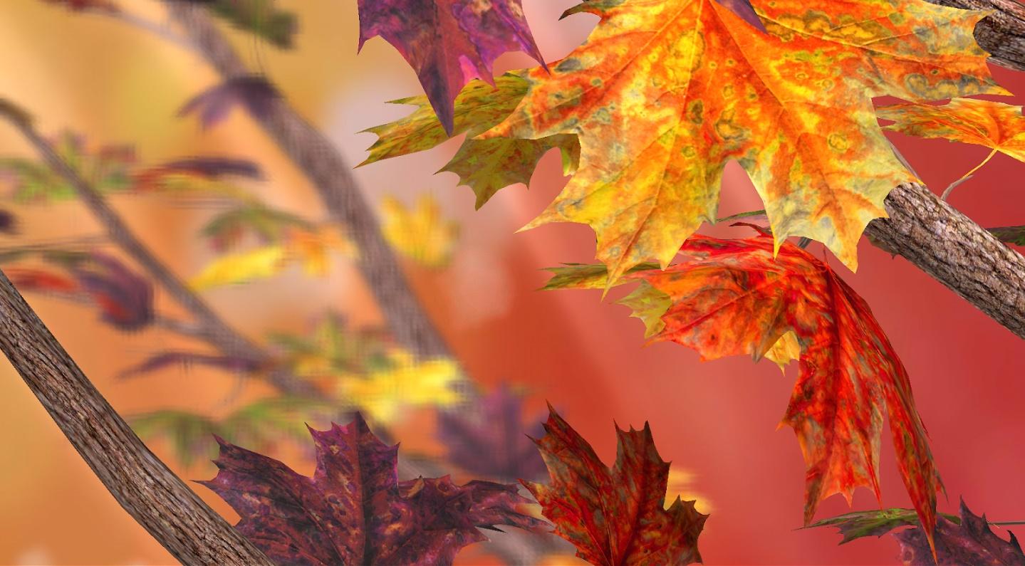 autumn-tree-live-wallpaper